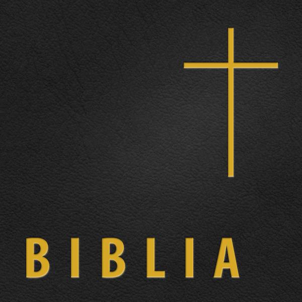 Biblia Uusi testamentti